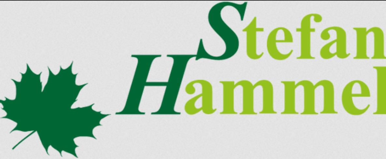 stefan logo